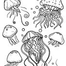 Free Nature Coloring Pages   Page 3