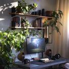 Pflanzen > RGB