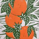 Orange Blossom (2020) Linocut by Jane Dignum