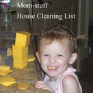 House Cleaning Lists