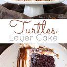 Turtles Layer Cake   Liv for Cake