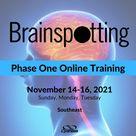 Brainspotting Phase One Training Southeast November   Cynthasis