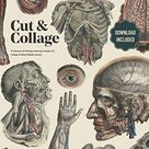 Cut And Collage: A Treasury Of Vintage Anatomy Images For Collage And Mixed Media Artists