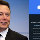 Signal messenger app sees huge downloads spike after Elon Musk suggests amid WhatsApp privacy update