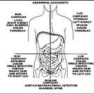 Left Side Abdominal Pain - Symptoms, Causes and Treatment