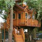 Best Tree Houses