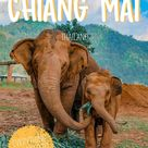 An Essential Travel Guide To Chiang Mai