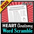 Heart Anatomy Word Scramble - Review Worksheet | Printable & Distance Learning
