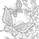 Adult coloring page. Coloring page for kids. Butterfly coloring page. Digital coloring page. Printable coloring page. Instant download PDF