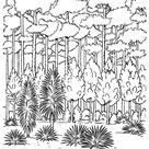 Arbor Day Coloring Pages - Forest trees Coloring Pages