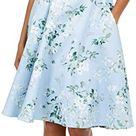 Calvin Klein Women's Princess Seamed Dress, Serene Multi, 2 at Amazon Women's Clothing store