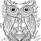 Owls and skulls ftw
