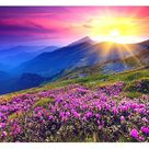 Sunrise in Flower Valley 5D DIY Paint By Diamond Kit