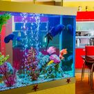 Simple Guide to Help You Deep Clean Your Fish Tank | Get Set Clean