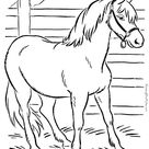 Animal Coloring Page of Horse to Print
