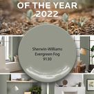 Sherwin-Williams Color of the Year 2022 Evergreen Fog 9130: How to Use It