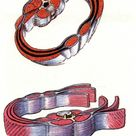 Cobra Core Support   Anatomy Trains Blog