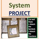 Project on Skeletal System of Human Body Cut & Paste Match Symbols & Functions File Folder Activity