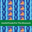 Useful Foods For The Stomach