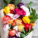 Fleurs /