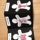 Human Body 11 Organ Systems Foldable