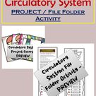 Circulatory System Project in File Folder Type Activity | Body System Parts and Functions Project
