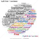 Human Brain Diagram Images, Stock Photos & Vectors