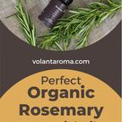 Perfect Strong Organic Rosemary Essential Oil
