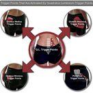 Quadratus Lumborum Trigger Points Masters of Low Back Pain