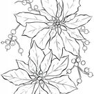 10 Poinsettia Clipart! - The Graphics Fairy