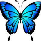 Kostenloses Bild auf Pixabay - Schmetterling, Blau, Insekt, Sommer