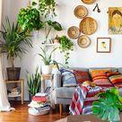 Pflanze mit großen Blättern - ein herrlicher Hingucker zu Hause