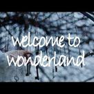 welcome to wonderland - anson seabra // lyric video