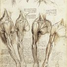 Explore Leonardo Da Vinci's Anatomical Sketches and Lesser-Known Artworks With This Coffee Table Book