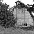 Country Barns