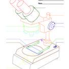 Mikroskop Arbeitsblatt für Schüler und Lehrer