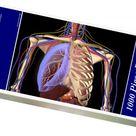 1000 Piece Puzzle. Human skeleton showing a transparent lung