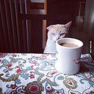 Monday Morning