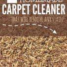 Homemade Carpet Stain Remover