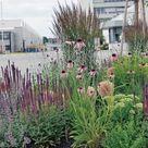 Ein modulares Freiflächenkonzept mit Stauden Mischpflanzungen im Industriepark Corporate Green Space Design