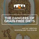 The Dangers of Grain Free Pet Diets