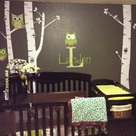 Owl Baby Rooms