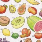 FRUIT - Online Dictionary for Kids