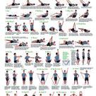 Fitness   Amazon.de