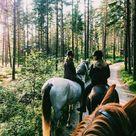 Riding Horses