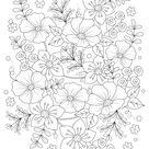 Flowers Printable Adult Coloring Page   Woo Jr. Kids Activities