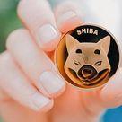 SHIBA INU se robo los corazones de los amantes de Floki