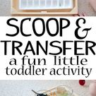 Scoop and Transfer - Busy Toddler