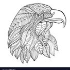 Eagle head adult antistress coloring page vector image on VectorStock