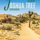 Joshua Tree National Park in den USA
